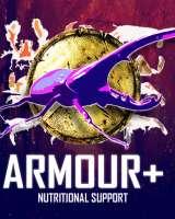 Armour + Powder